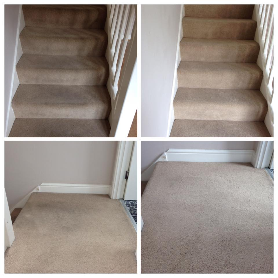 stacey-linton-carpet-cleaning