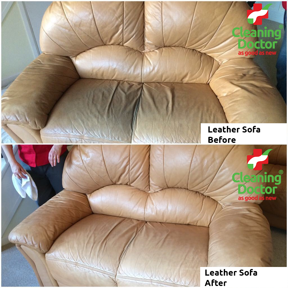 Cleaning Urine Leather Couch